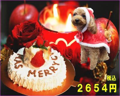 x-mascake_convert_20141213093654.jpg