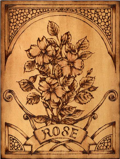 rose a-ru