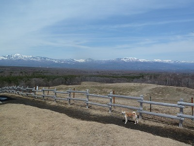 浅間牧場から見える山