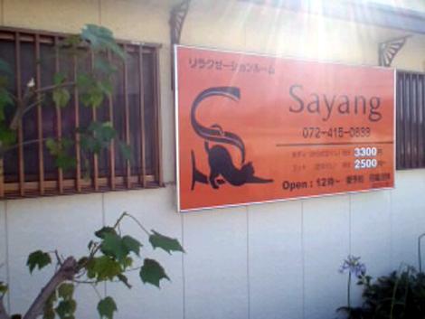 サヤン3x6
