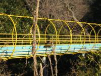 観音崎公園  ローラー滑り台