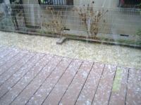 2013 雪 降り始め