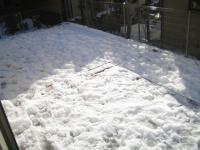 2013 雪 翌日 庭