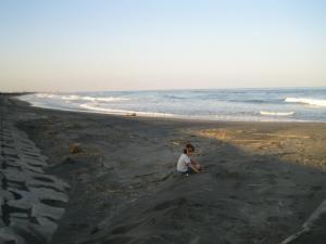 九十九里浜 夕方 浜遊び