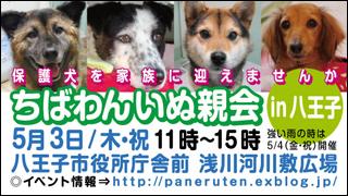 hachiouji20120503_320x180.jpg