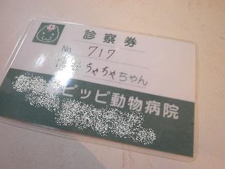 PC271588.jpg