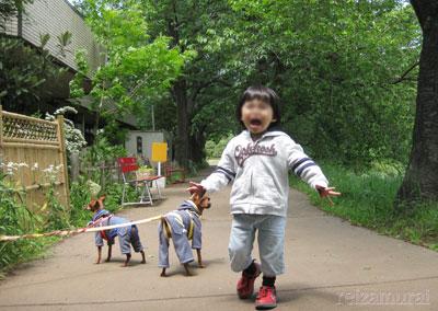 お散歩は大変!