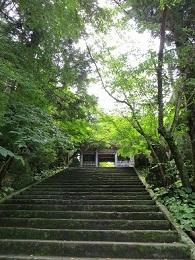 kochi1-3.jpg