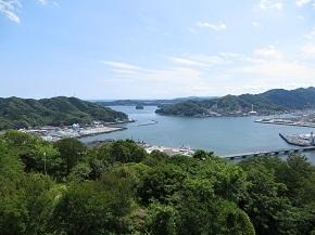kochi1-8.jpg