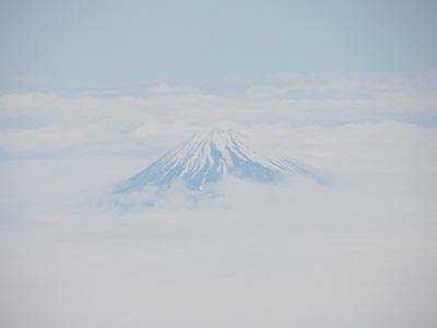 kochi3-.jpg