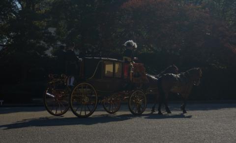 皇居東御苑で馬車?