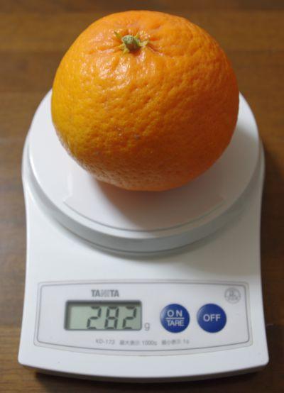 140126-伊予柑台はれひめ2