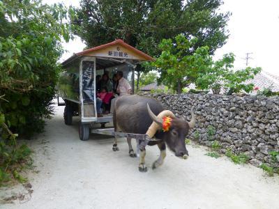 03_水牛車で島巡り