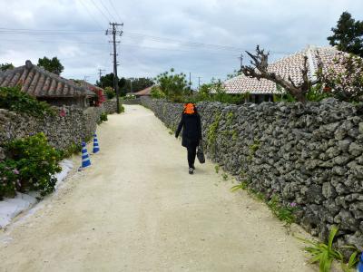 05_竹富島の町並み