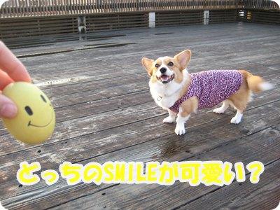 Smile vs たまごちゃん