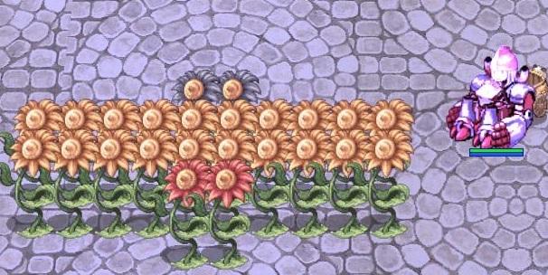 メカとお花畑