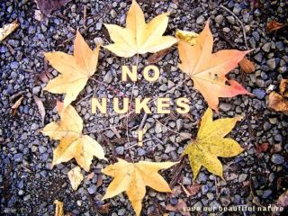 山中環no nukes