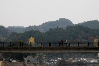 20121110_20.jpg