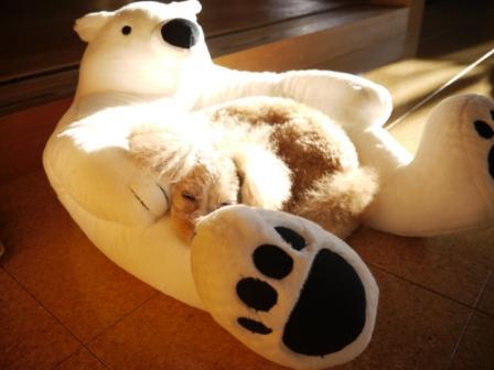 クマとそら (1)