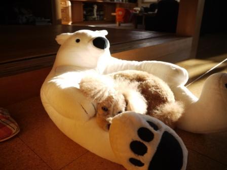 クマとそら (2)