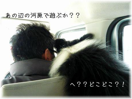 どこどこ?