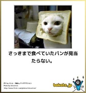 blogger-image-152358502[1]