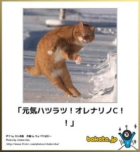 blogger-image--1370189414[1]
