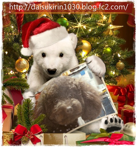 1107 6Rinちゃんと白クマ