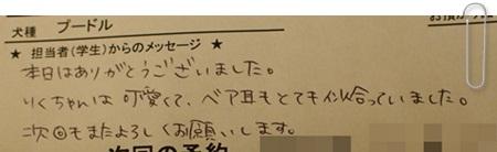 1123 5りくお手紙