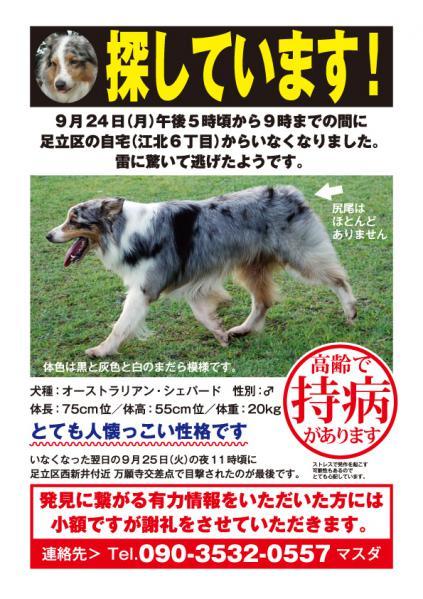 toranosuke_Web2.jpg