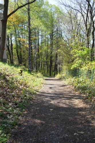 緑ヶ丘公園・散策路
