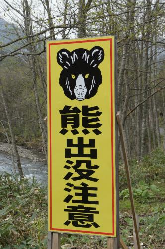 クマさんかんばん
