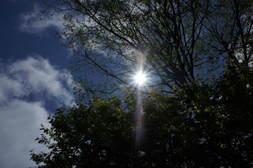 西町公園・太陽