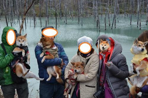 青い池記念写真