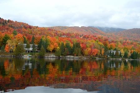 286森と湖