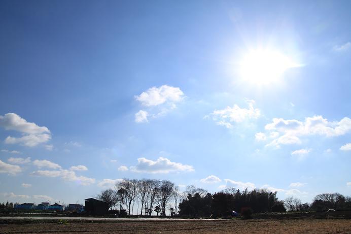 20121229東方農業特別区10a