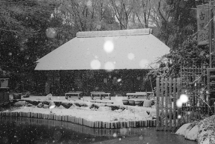 20130114初雪5a