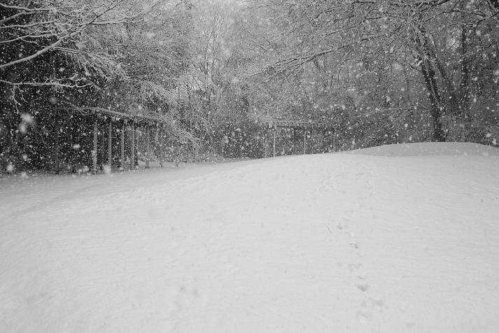 20130114初雪4a