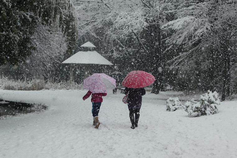 20130114初雪-1a