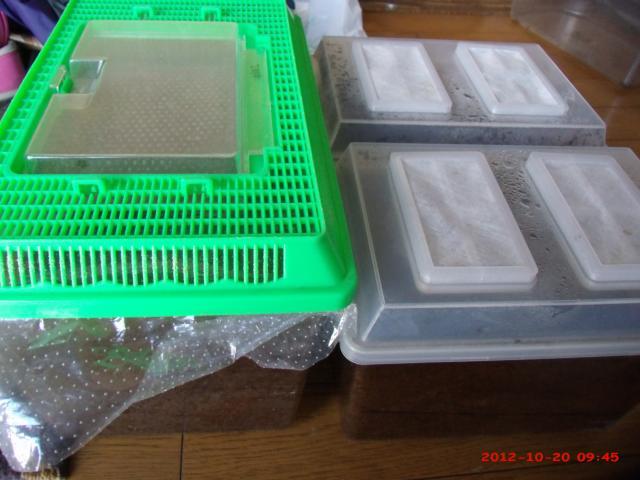GEDC0002_convert_20121020151503.jpg