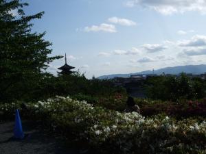 東山地区から見える京都の街並み