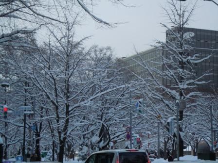 雪の街 003