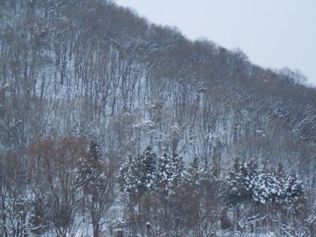 雪の山 002