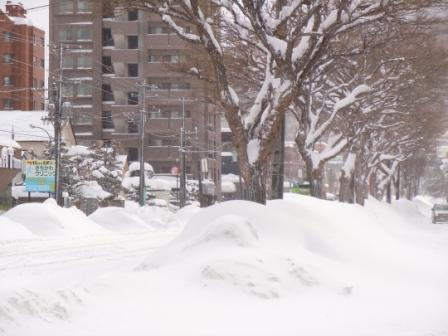 雪降り 008