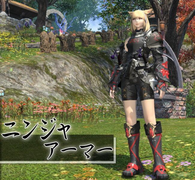ファッション忍者11