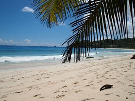 Seychelles-6.jpg