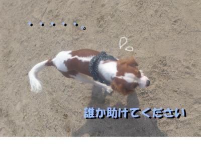 繝峨ャ繧ッ繝ゥ繝ウ3_convert_20121021013147