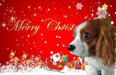 クリスマス+(1)_convert_20121224221430