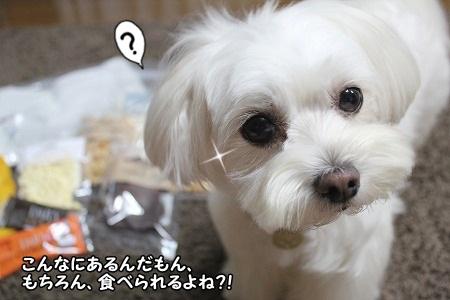 すげー、わかり易い子ね(^_^;)