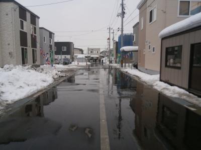1月25日 融雪状況